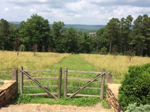 open spaces at Moss Mountain Farm, Farm2Home15, P. Allen Smith, Rhonda Franz, Captain Mom