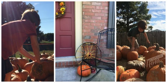 What kids can learn from fall