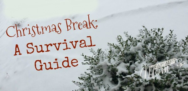 The Harried Parent's Survival Guide to Christmas Break